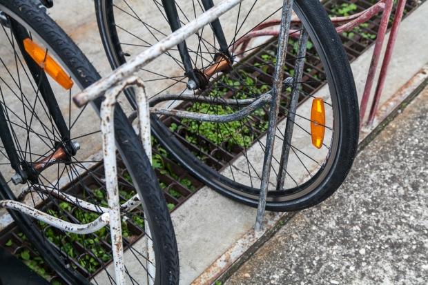 bikes_MAC_Bird-16